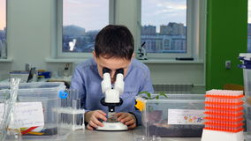 4K Estudante que estuda a ciência na biologia, classe de química que usa o microscópio video estoque