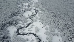 4K. Flight above wild winding river in frozen forest at foggy weather. Aerial panoramic view of beautiful winter valley stock video