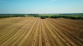 4K. Flight over cultivated fields with haystacks after harvesting. Aerial view stock footage