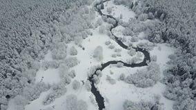 4K Flyg ovanför den lösa slingriga floden i djupfryst skog på dimmigt väder Flyg- panoramautsikt av den härliga vinterdalen arkivfilmer