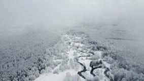 4K Flyg ovanför den lösa slingriga floden i djupfryst skog på dimmigt väder Snowly vinter på norden flyg- panorama- sikt arkivfilmer