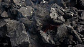 4K Fogo do carvão vegetal para o assado Fumo e chamas Carvão e chama quentes no assado filme
