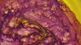 4K footage. Ink in water. Violet and yellow ink reacting in water creating abstract background. Ink in water. Violet and yellow ink reacting in water creating stock footage