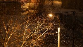 4K footage, snow is falling over light post and tree at winter night stock video