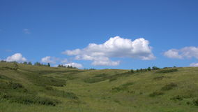 4k footage yellow-green hill and sky with clouds. Wild grasses. stock video footage