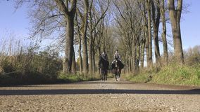 4K 2 Girls Riding Along Avenue. 4K - Two girls riding an their horses along a avenue stock video footage