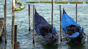 4K. Gondolas moored in Venice, Italy. Gondolas are the traditional transport. stock footage