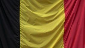 4K Grande bandeira de Bélgica que move-se através do vento Pa?ses Baixos vídeos de arquivo