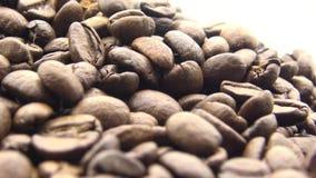 4k grillade kaffebönor roterar på vit bakgrund Ingrediens för kaffe arkivfilmer