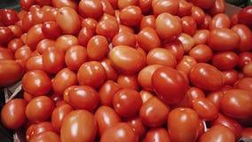 4k, Gruppe rote frische Tomaten in der Lebensmittelgeschäftabteilung des Supermarktes stock video