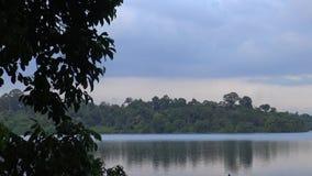 4k, hermosa vista del lago con los árboles ajardinan almacen de metraje de vídeo