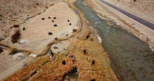 4K - Hommellengte van yaks die door een rivier in Tibet, China weiden stock video