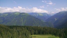 4k Kackar mountains with green forest landscape in Rize,Turkey stock footage