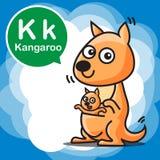 K Kangaroo color cartoon and alphabet for children to learning v. K Kangaroo cartoon and alphabet for children to learning vector illustration eps10 Royalty Free Stock Image