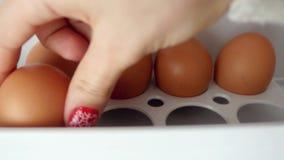 4k kobiety ręka Otwierają fridge wypełniającego i brać świezi jajka od chłodziarki zbiory wideo