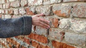 4K kobiety ręka rusza się nad starą ścianą z cegieł Ono ślizga się along Zmysłowy macanie Ciężka kamień powierzchnia zbiory