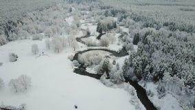 4K Lågt flyg ovanför spolningsfloden i djupfryst skog på dimmigt väder Flyg- panoramautsikt av den härliga vinterdalen stock video