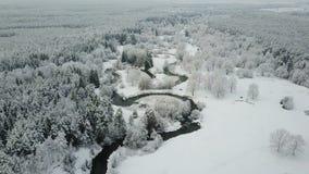 4K Lage vlucht boven windende rivier in bevroren bos bij mistig weer Luchtpanorama van mooie de wintervallei stock videobeelden