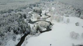 4K Lage vlucht boven windende rivier in bevroren bos bij mistig weer Luchtpanorama van mooie de wintervallei stock video