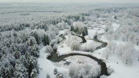 4K Lage vlucht boven windende rivier in bevroren bos Luchtpanorama van mooie de wintervallei stock footage