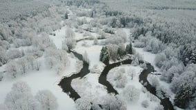4K Lage vlucht boven windende rivier in bevroren bos Luchtpanorama van mooie de wintervallei stock videobeelden