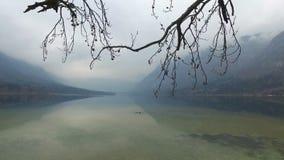 4K Lago di stupore Bohinj in tempo nebbioso attraverso i rami di alberi, vista panoramica Julian Alps, parco nazionale di Triglav stock footage
