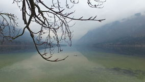 4K Lago di stupore Bohinj in tempo nebbioso attraverso i rami di alberi, vista panoramica Julian Alps, parco nazionale di Triglav video d archivio
