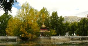 4k Lhasa Potala park in autumn,Tibet china,golden trees & temple at the lake. stock video