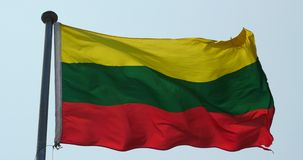 4k lithuania flag is fluttering in wind. stock video footage