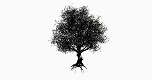 4k a lonely tree & root silhouette swaying in wind. stock video