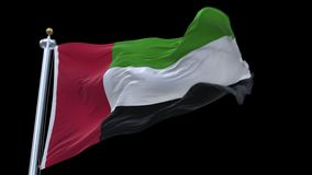 4k looping United Arab Emirates flag waving in wind.alpha channel included. 4k looping United Arab Emirates flag with flagpole waving in wind.A fully digital stock video footage