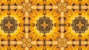4K loopingu kalejdoskopu Kolorowa sekwencja Abstrakcjonistyczny ruch grafika tło ilustracji