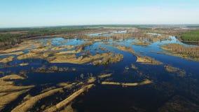 4K Lot nad zalewającą błękitną rzeką w wczesnej wiośnie, powietrzny panoramiczny widok zbiory