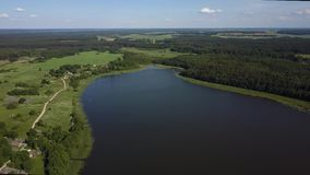 4K luchtlengte van een wild meer in het midden van het bos stock videobeelden