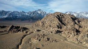 4K luchtvlucht bij Eenzame Pijnboom Californië de V.S. Mount Whitney en sneeuw behandelde Bergen stock video