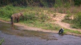 4K Mahout gaan zitten aan rivieroever terwijl de Aziatische olifant gras in bos eet stock video