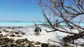 K MANIUN FUSHI wyspa Zdjęcie Stock