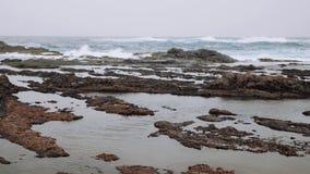 4k materiał filmowy ocean fale myje w górę dalej czarne powulkaniczne skały na Cabo verde zdjęcie wideo