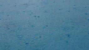 4K materiału filmowego bezszwowa pętla Zbliżenie materiału filmowego deszcz na wody powierzchni deszcz opuszcza kałuży pętli bezs zbiory