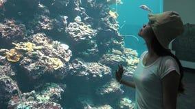 4k, muchacha del visitante que mira pescados bajo el agua del arrecife de coral en acuario asiático metrajes