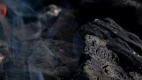4K Nahaufnahme von brennenden Kohlen im Grillgrill Kohle beginnt zu brennen stock footage