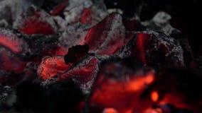 4K Nahaufnahme von Holzkohle Burning Glühende Holzkohle für Grill Hei?e Kohle stock footage