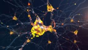 4K neuronenactiviteit stock illustratie