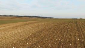 4K Niski lot i start nad świeżo kultywujący pola w wiośnie, widok z lotu ptaka zdjęcie wideo