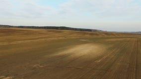4K Niski lot nad świeżo kultywujący pola w wiośnie, widok z lotu ptaka zbiory