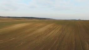 4K Niski lot nad świeżo kultywujący pola w wiośnie, widok z lotu ptaka zdjęcie wideo
