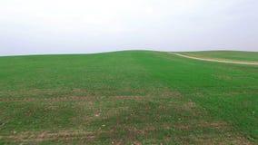 4K Niskiego lota above zieleni wzgórza z drogą gruntową, widok z lotu ptaka zbiory wideo