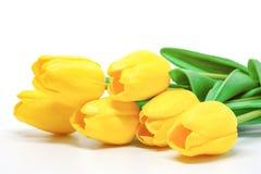 K?nstliche gelbe Tulpen auf wei?em Hintergrund lizenzfreie stockbilder