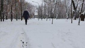 4K o tiro geral do parque do inverno e o tiro de uma menina que anda ao longo dele filme