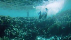 4k onderwaterlengte van mensen die rond koraalrif zwemmen Dat is verboden en kan mariene aard berokkenen stock videobeelden